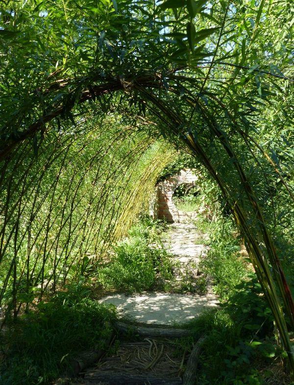 Tunnel végétal au CINE de Bussierre