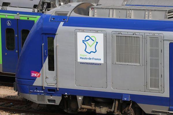 Le trafic des trains TER sera légèrement perturbé cet été.