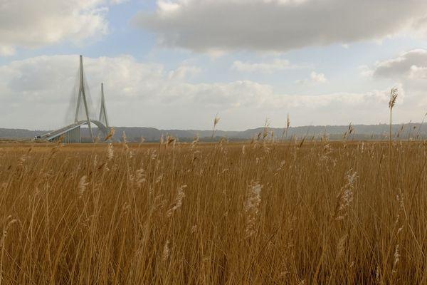 Les précipitations émailleront ce samedi dès la mi-journée vers le pont de Normandie.
