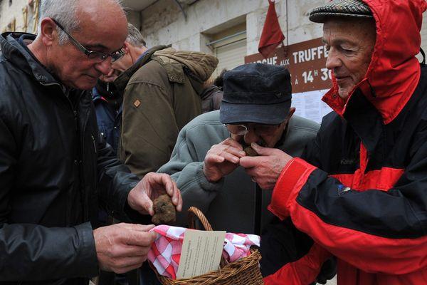 Le premier marché aux truffes 2014 de Lalbenque