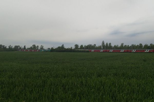 Un TER qui circulait entre Tonnerre et Paris a percuté un homme le lundi 3 juin, vers 9h, dans le sens Dijon-Paris