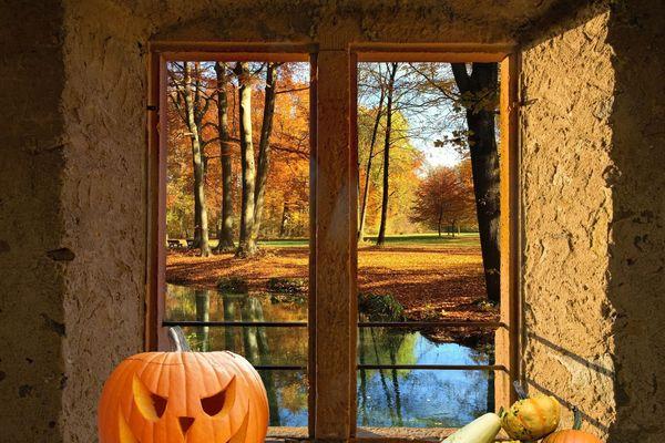 L'automne, ses belles couleurs et ses citrouilles