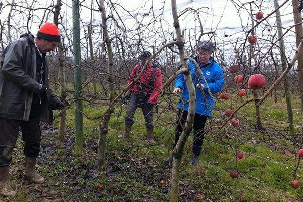 Sur leur exploitation de Moissac (82), Françoise Roch et ses associés pratiquent l'agroécologie depuis près de 20 ans.