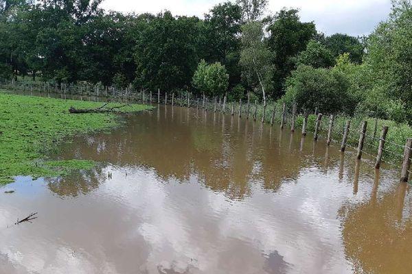 L'eau a envahi une partie du parc