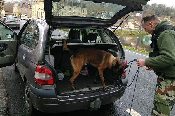 Les contrôles de stupéfiant de la gendarmerie s'effectuent en présence d'un chien spécialisé