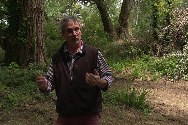 """Stéphane Vincent,conservateur desréserves naturelle - Ligue pour la protection des oiseaux : """"C'est vraiment ce qu'on appelle des coupes rases, et la forêt est complètement massacrée"""