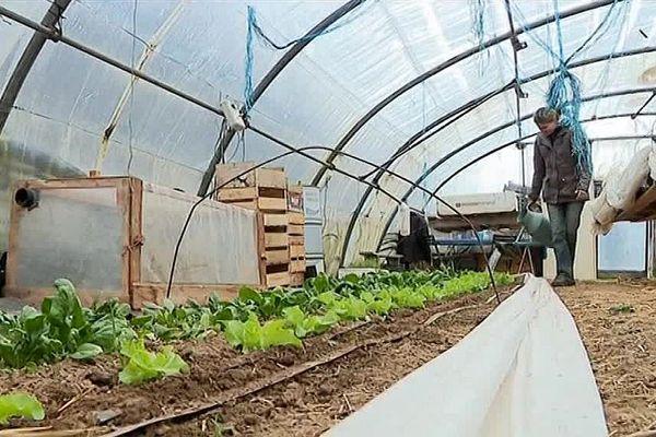 A Balsièges, une jeune maraîchère cultive ses légumes dans des conditions climatiques difficiles.