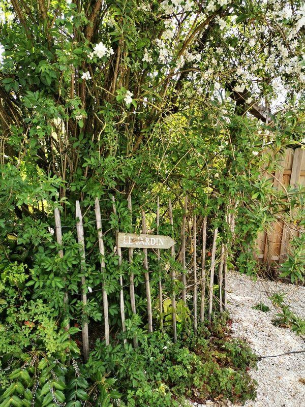 Le confinement a donné envie à certains Français de retourner au potager ou de s'initier au jardinage.