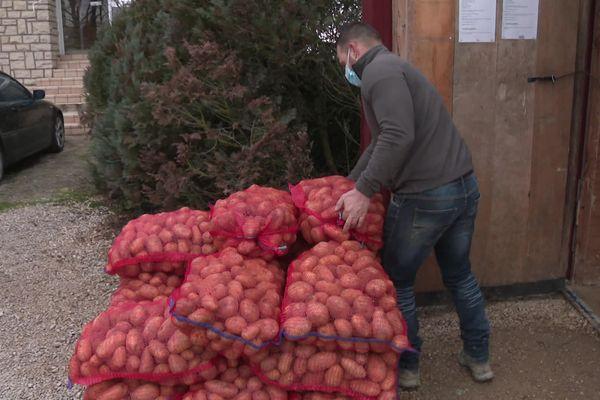 Une vente directe de pommes de terre, bradées à moitié prix !