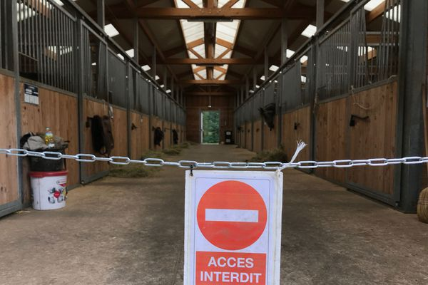 Au centre équestre de Saint-Avold, le choix a été fait de laisser les chevaux dans les boxes. Ils ne sortent qu'une à deux heures par jour.