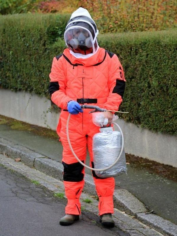 Des premiers tests de destruction de colonie par injection de vapeur ont été effectués.