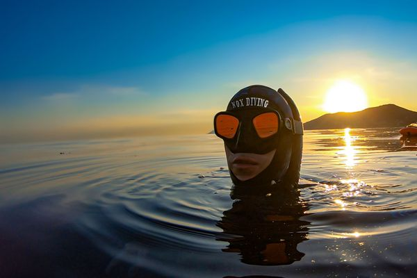 Du Lavandou (Var) à Calvi (Haute-Corse), Michel Nox a parcouru 236km à la nage en huit jours.