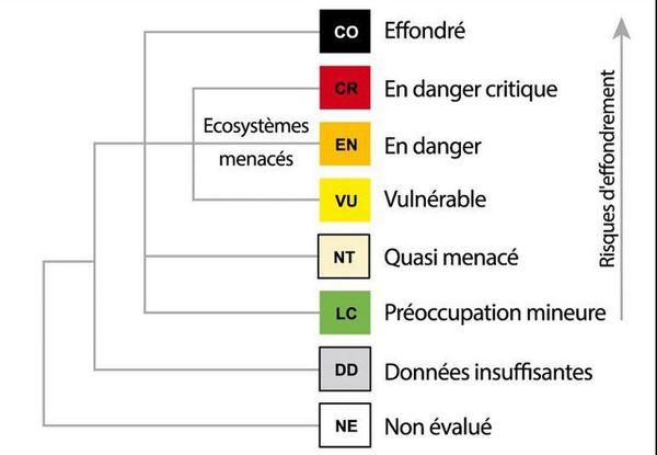 Le classement des écosystèmes selon leurs risques d'effondrement par l'UICN.