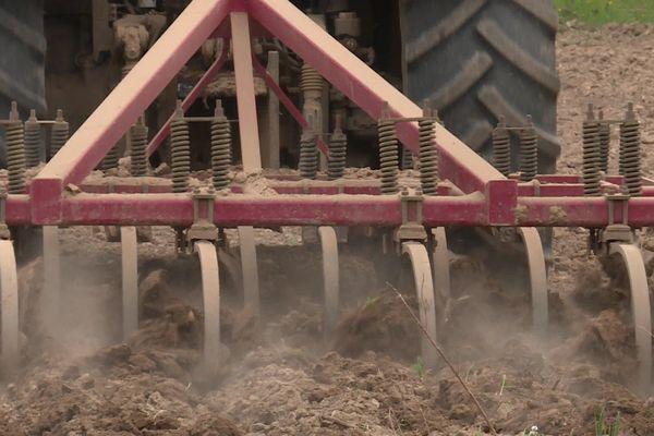 Il faut creuser profond dans les champs pour trouver de la terre humide . La région Auvergne-Rhône-Alpes connaît un épisode de sécheresse de printemps assez exceptionnel. Avril 2020
