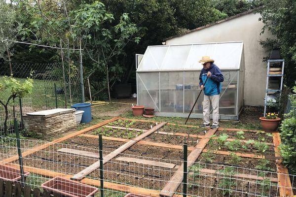 Un jardinier amateur cultive son potager à Clapiers dans l'Hérault