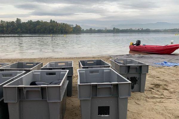 300 bouteilles de crémant, stockées dans des boîtes de plastique, immergées par 25 mètres de fond