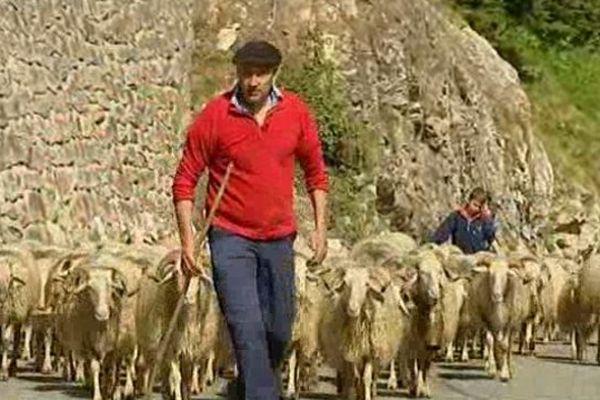 La neige est encore là, alors les bergers montent vers les flancs des Pyrénées en se demandant qu'elle sera la qualité de l'herbe là-haut ? Ils espèrent que le soleil va corriger les intempéries du printemps.