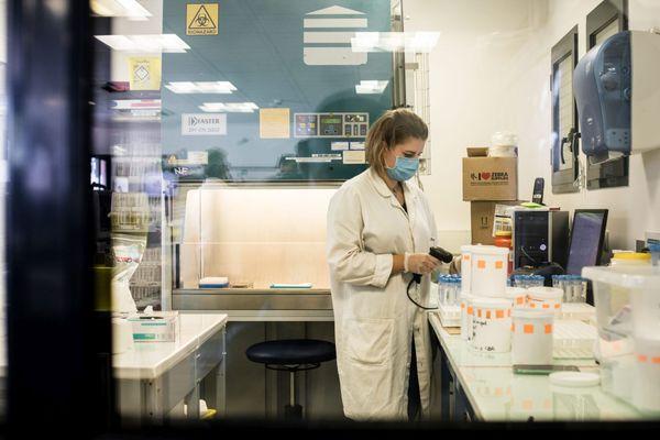 Le personnel de laboratoire d'analyses médicales est en situation de grande fatigue en cette période de crise sanitaire