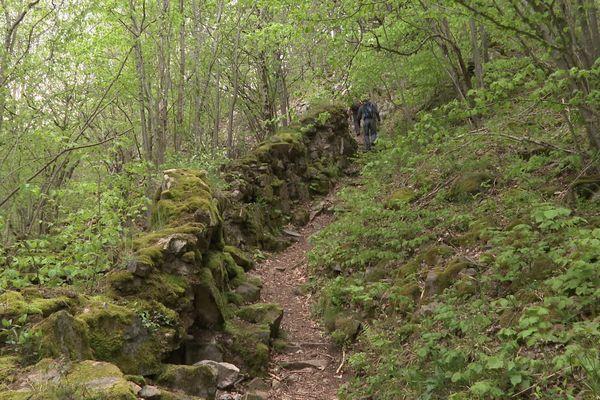 """La """"Suisse lippique"""", emmène les promeneurs dans les pas des soldats allemands de la Première Guerre mondiale."""