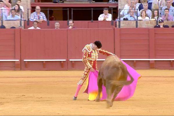 6 mai 2017, Séville, toro de El Pilar. La demie véronique d'Antonio Ferrera!