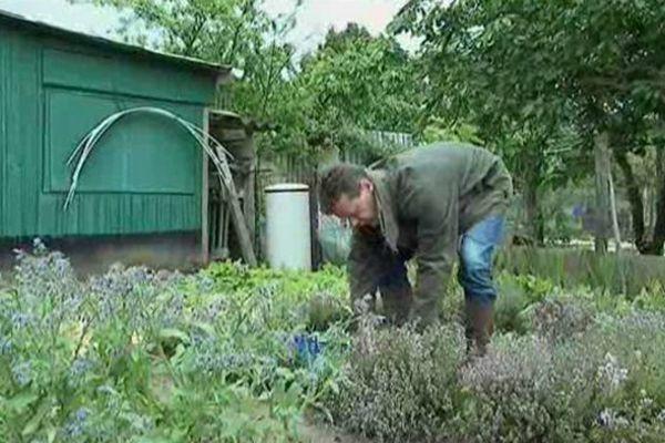 Benoît Pasquier récolte dans son jardin les herbes et les légumes qu'il servira le jour même à ses clients