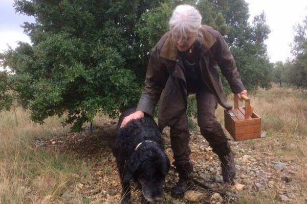 Récolte de truffes dans l'Aude
