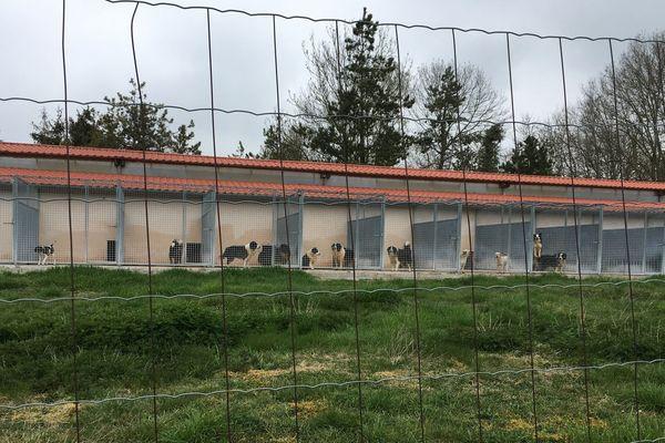 L'élevage comporte deux sites, l'un à Drosnay et l'autre à Lignon (notre photo), deux villages proches de l'Aube.