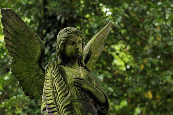les cimetières ne sont ouverts que pour les inhumations