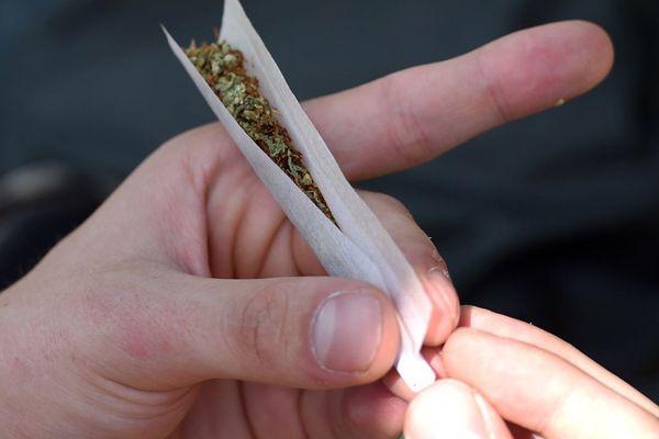 Un joint de cannabis