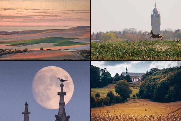Paysages, couleurs, animaux : les Instagrameurs ne se lassent pas de photographier le Nord et le Pas-de-Calais