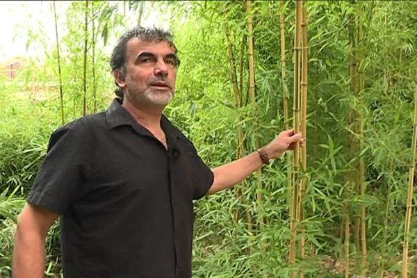 Marc Cotentin, producteur de bambou dans le Loiret, approvisionne le zoo de Beauval pour le plaisir des pandas