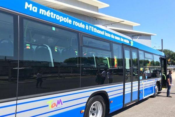 Montpellier - un des 15 bus de la TAM roulant au bioéthanol de marc de raisin produit par UDM à Vauvert dans le Gard - 23 juin 2020.