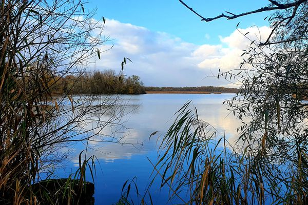 Le bassin sud de l'étang de la Horre, dans l'Aube.