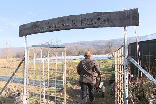 A Mandeure, dans le Doubs, la ferme bio des jardins du petit âne a vu la perte de toute sa production en 2019.