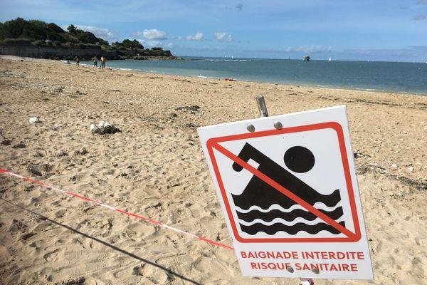 Baignade interdite sur la plage des Minimes