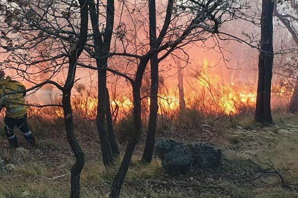Une quarantaine de pompiers luttent activement contre un feu attisé par le vent violent
