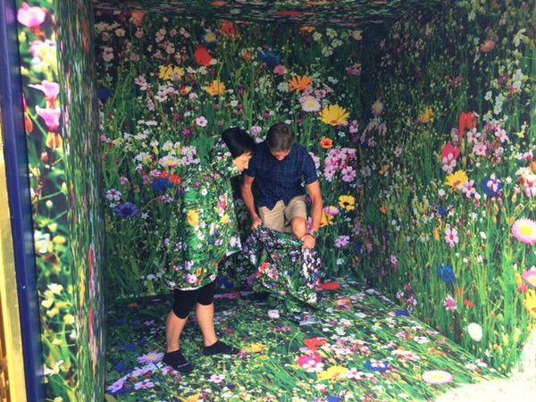 """Dans les """"Golden Cubes"""" de Fanny  Bouyagui les havrais se fondent dans le paysage"""