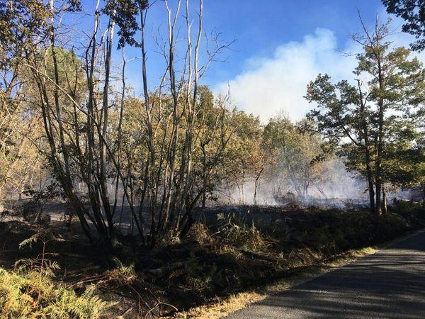 Incendie à Issac, une dizaine d'hectares de forêt ravagés