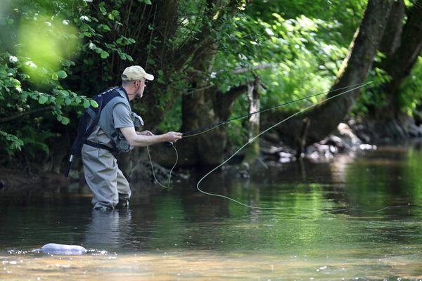 Pêche à la truite avec la technique de la pêche à la mouche