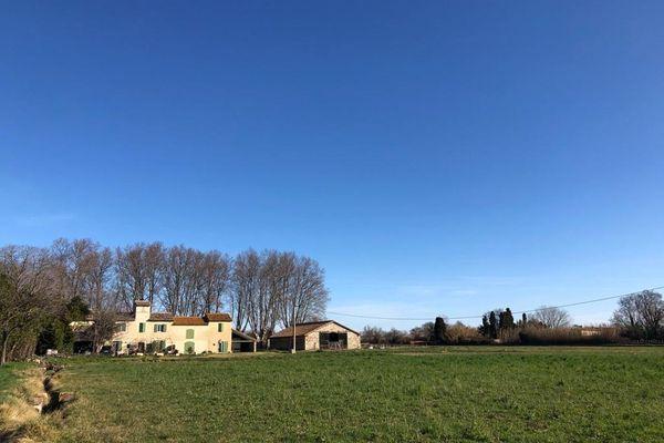 Les champs de David Laforest, agriculteur et membre du comité foin de Crau, sont menacés par le projet de contournement autoroutier d'Arles.