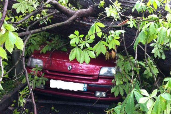 Des arbres arrachés par le vent sont tombés sur des voitures mais aussi des maisons et des voies ferrées.