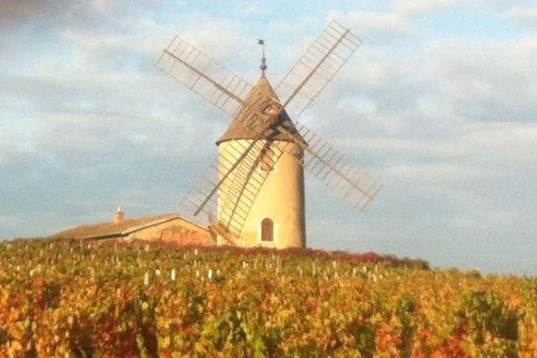 Le fameux moulin à vent qui donne son nom à un des plus prestigieux crus du beaujolais