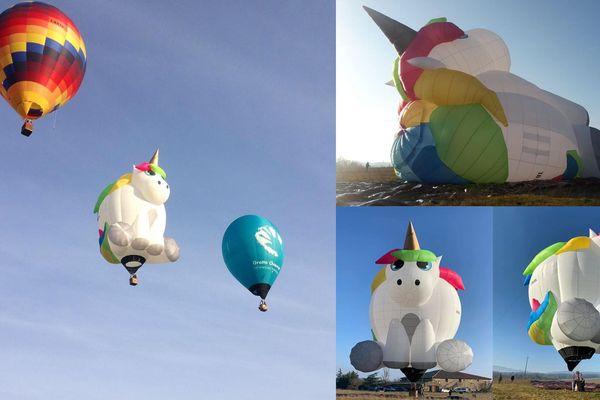 Lulu, créée par la société annonéenne (Ardèche), Ballons Chaize, est le premier ballon à forme certifié en France.