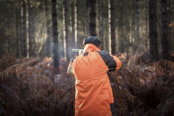 Ouverture de la chasse dimanche 13 septembre à 8h