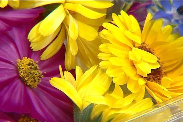 Des fleurs comestibles : une tendance qui séduit de plus en plus de restaurateurs et de clients