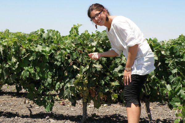 Pauline Vicard a grandi au cœur du vignoble Bourguignon.