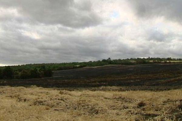 Un champ de chaume de 5 ha a brûlé en quelques minutes à Lempdes mardi 7 juillet. Depuis le 30 juin et le début de la canicule, les départs de feux de broussailles se multiplient dans le Puy-de-Dôme.