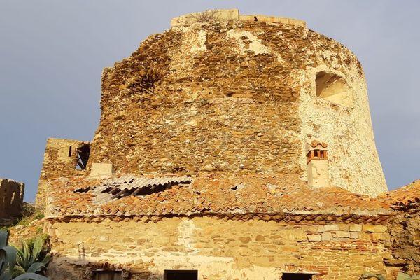 Tour à canon Fort du Petit Langoustier
