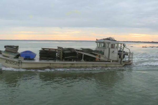 Les bateaux des ostréiculteurs ont poursuivi leur navette entre les bancs d'huîtres et les sites à terre.