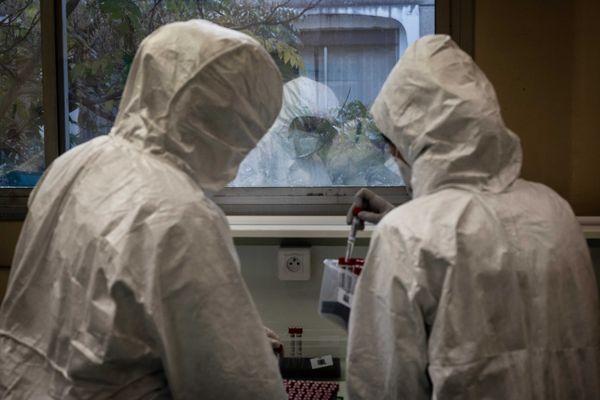 Les vétérinaires effectuent des analyses Covid-19 à l'école VetAgro de Marcy l'Etoile (métropole de Lyon), le 12 octobre 2020.